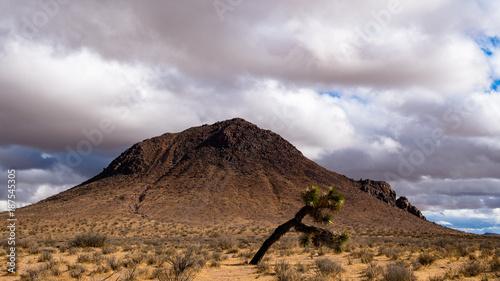 Fotobehang Wit Mojave Desert