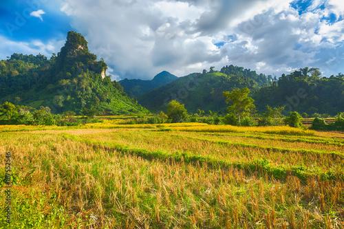 Papiers peints Miel Beautiful rural landscape.Vang Vieng, Laos.
