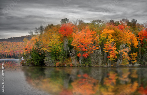 Foto Murales Ricker pond in Vermont with fall foliage