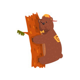 Smiling wild bear hugging tree trunk. Cartoon animal with brown fur, small rounded ears and paws with claws. Grizzly in cap and bow tie. Flat vector for sticker, postcard, book