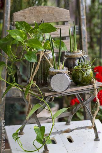 Foto Murales Gardening decoartion