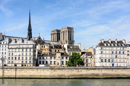 Fotobehang Parijs View of Notre-Dame de Paris cathedral on the Ile de la Cite with typical parisian buildings in the foreground.
