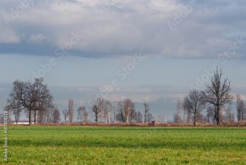 Papiers peints Taupe paesaggio di campagna in inverno