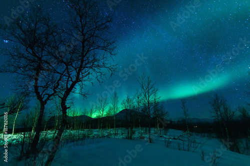 Fotobehang Noorderlicht Aurora Borealis Northen lights phenomenon.