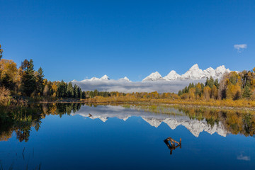Snowcapped Tetons Reflected in Autumn