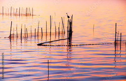 Fridge magnet amanecer en el parque nacional de la albufera de Valencia