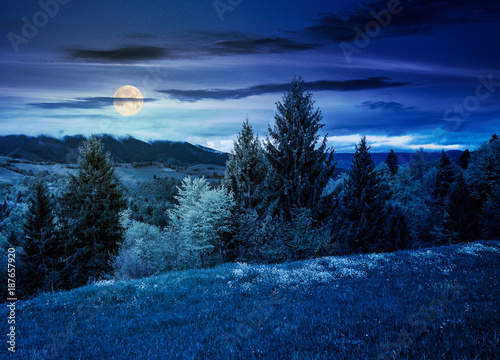lovely countryside with grassy hills at night in full moon light. beautiful nature of Carpathian mountains in springtime - 187657920
