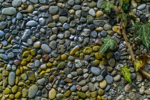 In de dag Stenen Painted pebbles