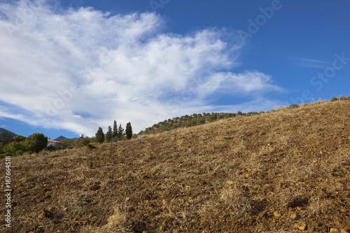 Deurstickers Blauwe hemel andalusian landscape