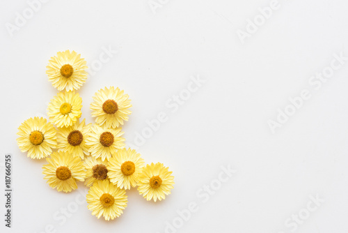 Directly above view of dried yellow everlasting daisies arranged left corner on white table - nature background