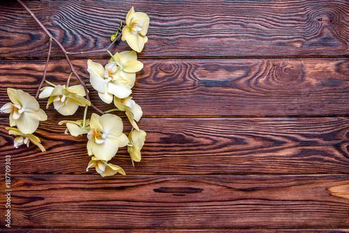 Branch of a yellow orchid on a brown wooden background  - 187709303