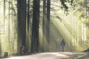 Man walks on the foggy forest road with magic ray of light. © robsonphoto