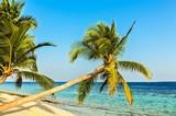 Tropical beach - 187721307