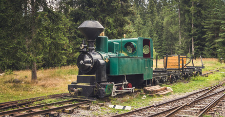 Beautiful Old Steam Locomotive in the Forest