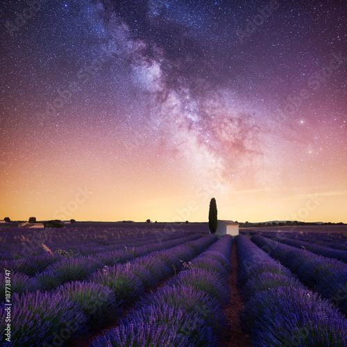 Foto op Canvas Aubergine Lavande Voie Lactée
