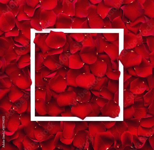 Foto Murales Frame of red rose petals