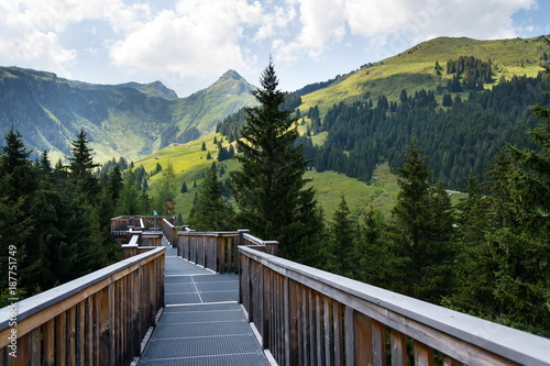 The highest tree crown trail in Europe, Saalbach-Hinterglemm valley, Alps Mountains, Austria, summer day