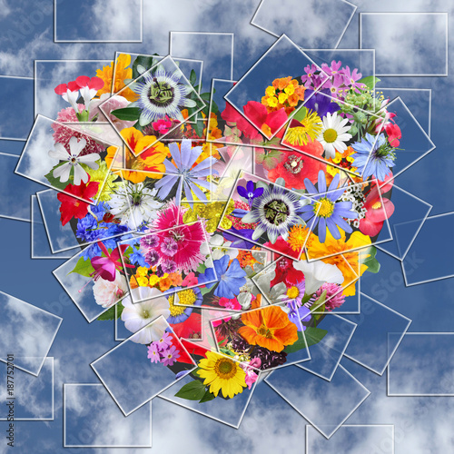 Foto Murales Collage Heart  made with Photography Flowers on Blue sky