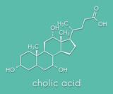 Cholic acid (cholate) molecule. Main bile acid component. Skeletal formula. - 187814702