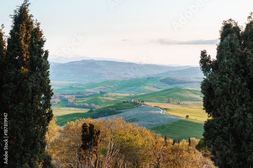 Deurstickers Toscane Colorful Tuscan hilly landscape in spring in sunset