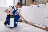 Exterminator Worker Spraying Insecticide Chemical - 187857544