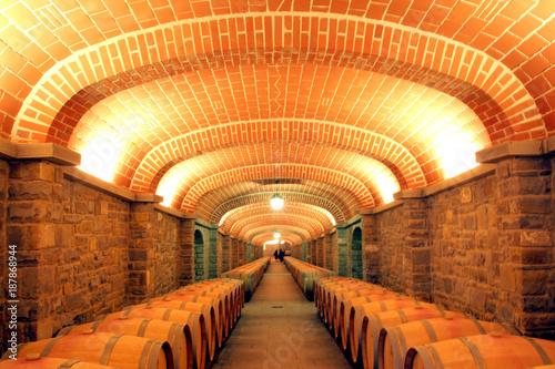 Aluminium Toscane Italia, Toscana, Arezzo, il villaggio de Il Borro, una cantina e botti di invecchiamento vino.