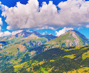 View of Alps in summer