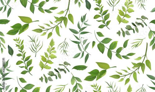 Materiał do szycia Wzór z eukaliptusa palmy różnych paproci, naturalne gałęzie liści, zielonych liści, zioła, Tropikalna roślina ręka ciągnione akwarela wektor świeże piękno rustykalne eko przyjazny tła na biały