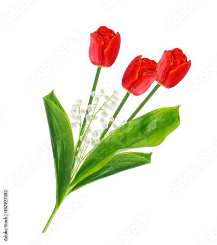Fotobehang Lelietjes van dalen spring flowers tulips isolated on white background.