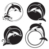 Fototapeta Set of vintage dolphin icons, emblems and labels with waves and water drops