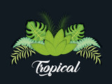 trendy summer tropical leaves banner