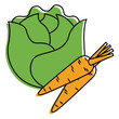 lettuce and carrots vegetables fresh food vector illustration