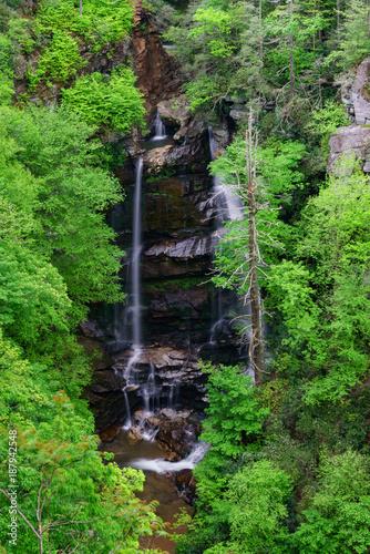 Foto op Canvas Natuur Spring Waterfall