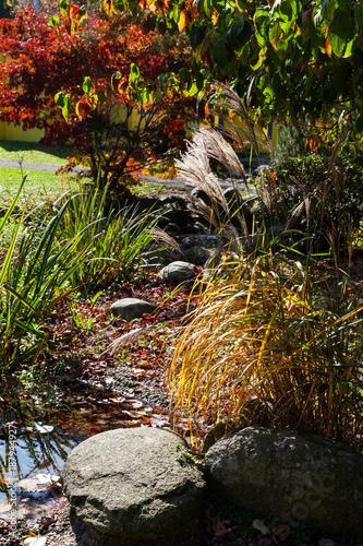 Foto Murales Garten