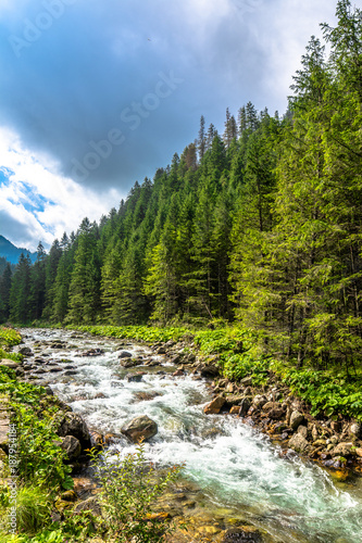 Foto Murales Landscape of mountain rapids on a river in mountains, natural environment in Tatras