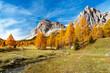 Quadro jesienne, kolorowe drzewa i strumyk na łące pod  Monte Lagazuoi i Tofana do Rozes