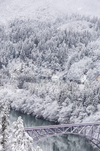 Fototapeta Winter landscape train