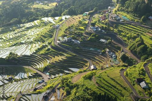 Fotobehang Rijstvelden terraced paddy field in Mie