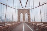 Brooklyn Bridge in New York, USA - 188023508