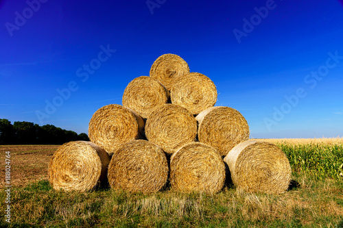Keuken foto achterwand Donkerblauw Rolls of hay lined up in beautiful sunny and meadow