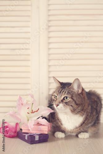 Aluminium Kat Cat with gifts