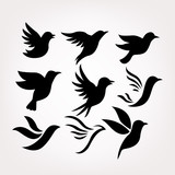 Bird icon collection set - 188079740