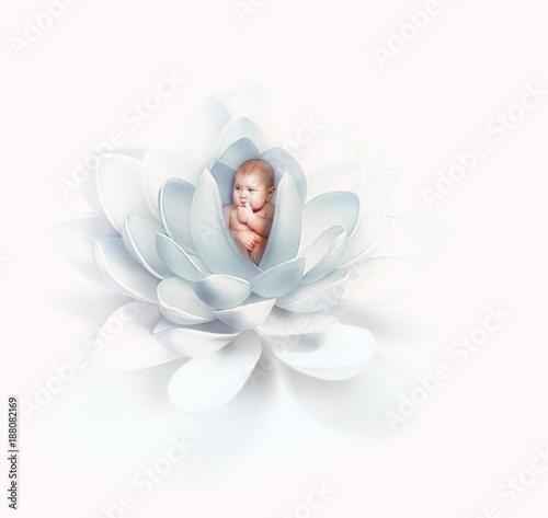 newborn baby inside lily flower - 188082169