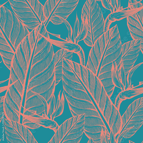 Seamless pattern of exotic flowers. Strelitsia. Floral background. Nature. - 188083101