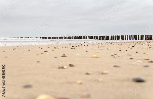 Foto Murales coastal beach scenery