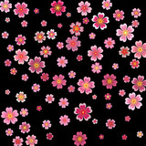 Sakura blossoms background with 3d effect. Vector