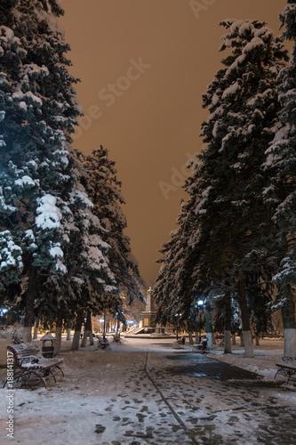 Foto Murales Городской парк зимней ночью