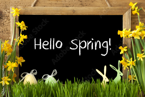 Foto Murales Narcissus, Easter Egg, Bunny, Text Hello Spring