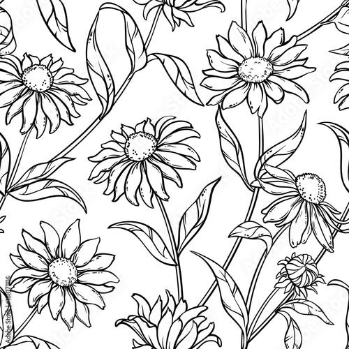 echinacea seamless pattern