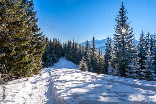Aluminium Blauwe hemel Winter in the mountains